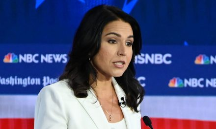 Yang, Bennet Rip Democrats For Cowing To Billionaires After DNC Posts Video Of Candidates But Leaves Out Tulsi