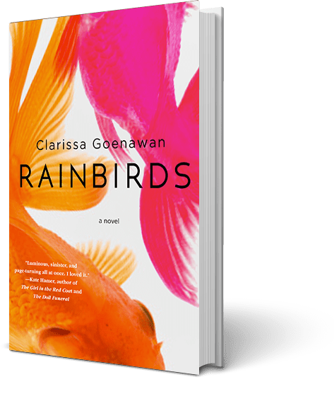 Image result for Rainbirds by Clarissa Goenawan