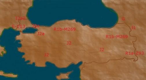 Turkish female DNA