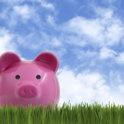 Digit helps to automate saving money and pay off your credit card debt, too!