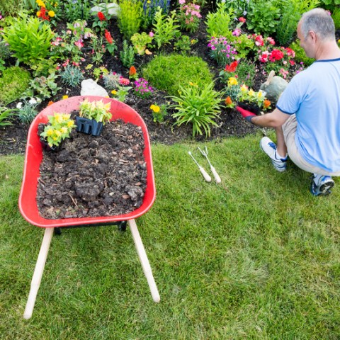 12 low-maintenance landscaping ideas for any climate