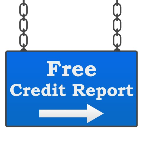 Free Credit Report Guide