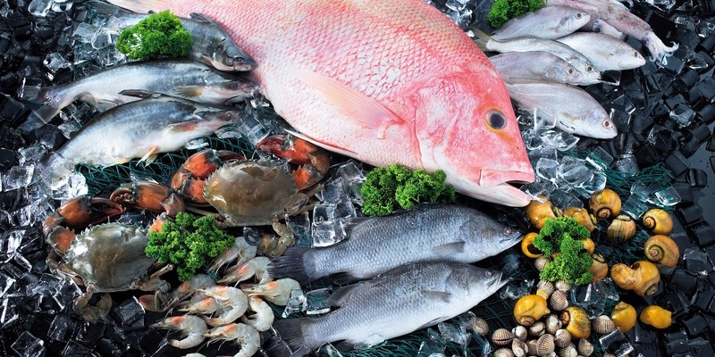 Fish fraud: You probably have no idea what's actually in the seafood you order