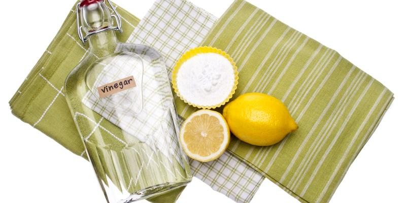 5 natural ways to get rid of pests
