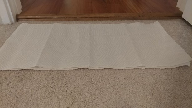 Step 5: Blot the carpet with dry paper towels to remove excess moisture and soap.