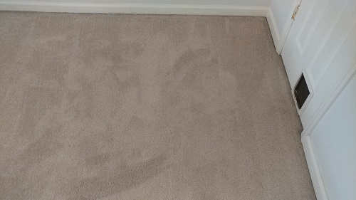 After using the carpet cleaner