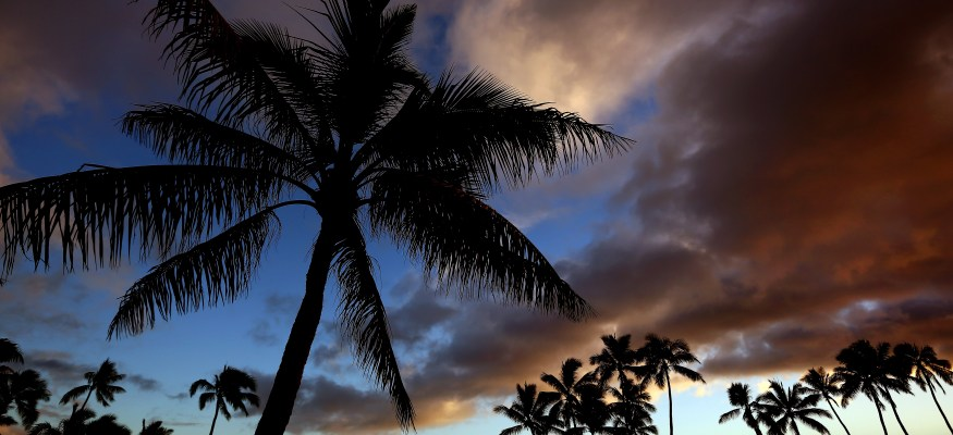 5 steps to Hawaii on $50 a day (or less!)