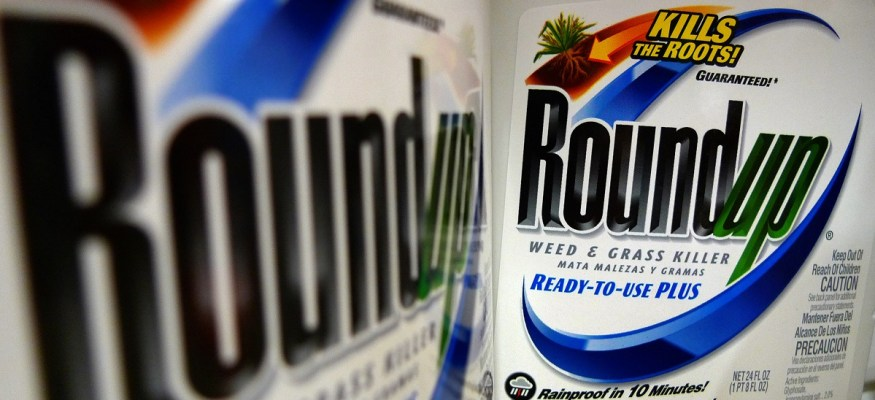 Ingredient in popular weed killer going on list as cancerous