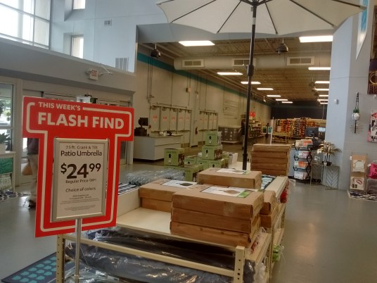 Look For The Flash Find When You First Enter