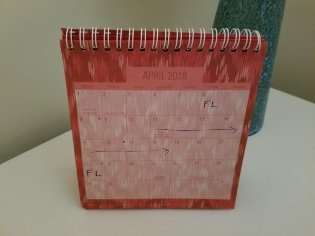 Dollar Tree calendars