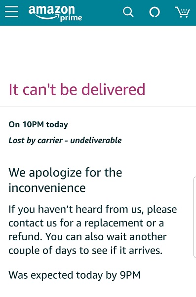 Amazon package lost in transit