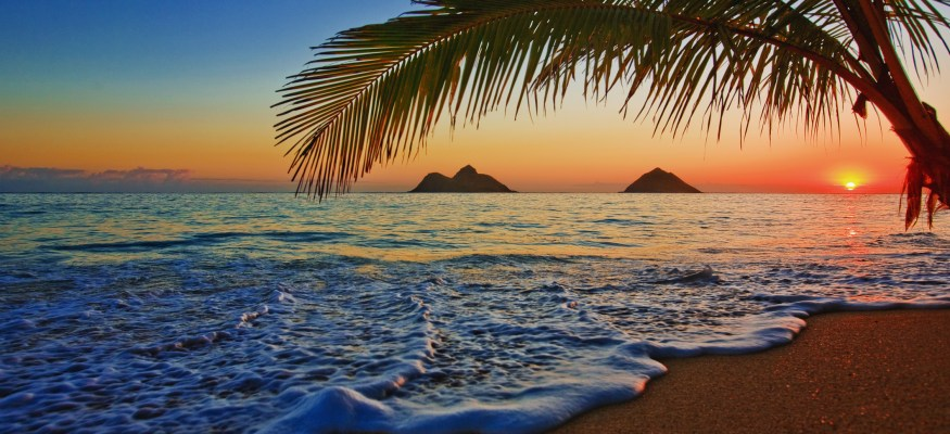 Now the best time to buy airfare to Hawaii.