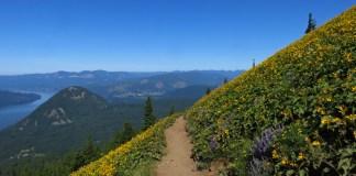 trail running clark county