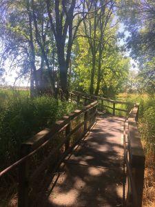ridgefield wildlife refuge