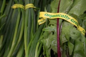 PeaceHealth Organics Dirty Dozen