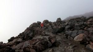 Climbing Mount St Helens Bill Automata