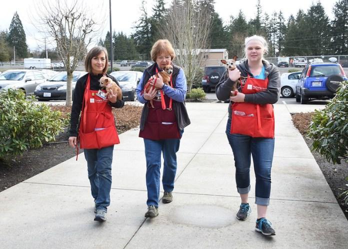 Humane Society for Southwest Washington Volunteers