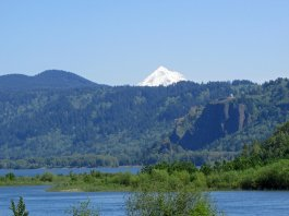 Columbia RIver Dike Hike via Jeff Hollett