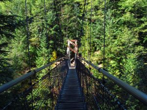 Lava Canyon Suspension Bridge via Jeff Hollett