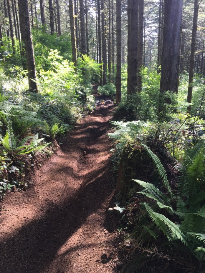 The trails at Rock Candy via TOS