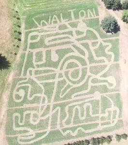 Clark County Pumpkin Patch Walton Farms 2019