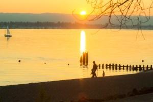 Winter walks in vancouver Wintler Park 3