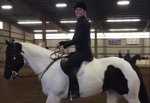 Adopt A Horse Clark County kelsey and whiskey