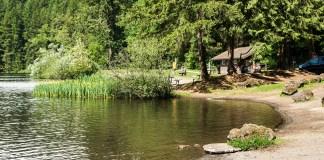 Clark-County-State-Park-Battle-Ground-Lake-Shoreline
