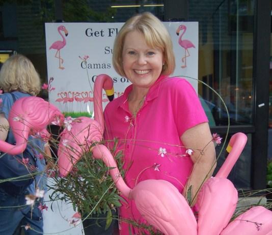 Downtown camas Fun with Flamingos 2019