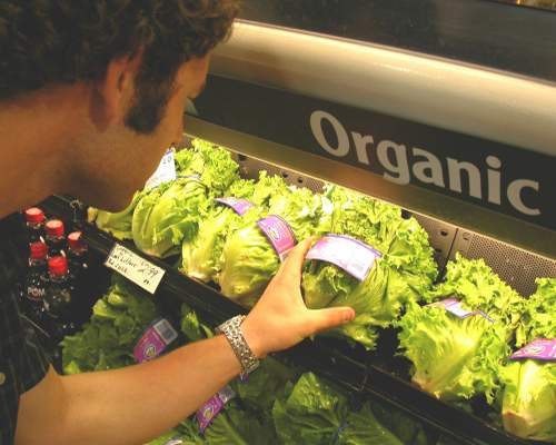 5 cheap options for organic food