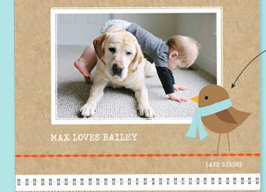 Enjoy a free 8×11 wall calendar from Shutterfly with code