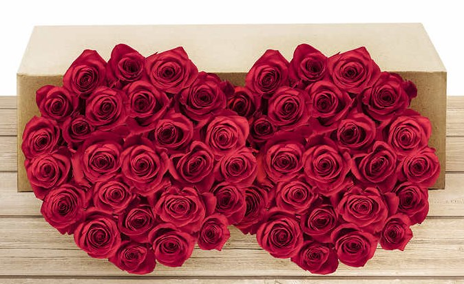 Costco members: Pre-order 50 roses for $50 while supplies last