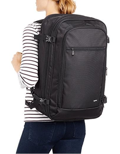 amazon basics travel bag