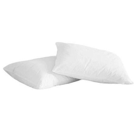 2-pack memory white duck pillows for $10