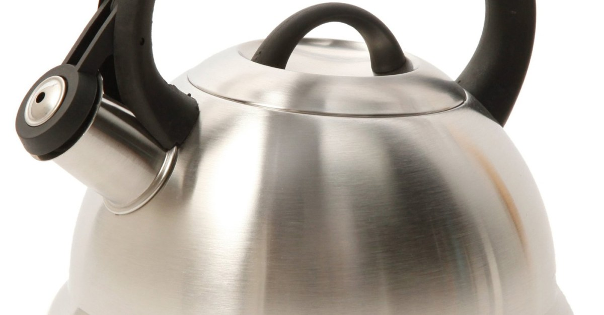 Mr. Coffee Flintshire 1.75-qt stainless steel whistling tea kettler for $6