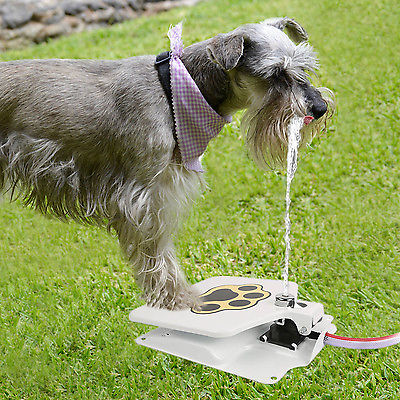 Dog pet water fountain for $23, free shipping
