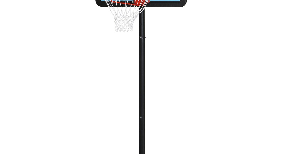Lifetime adjustable portable basketball hoop for $80