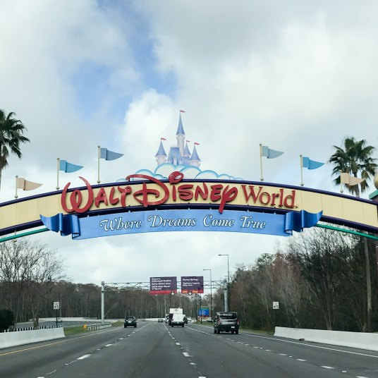 Walt Disney World Resort 5-day military promotional tickets from $257