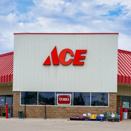 Ace Hardware coupon