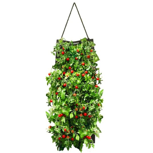Touch of Eco hanging growing kits from $18