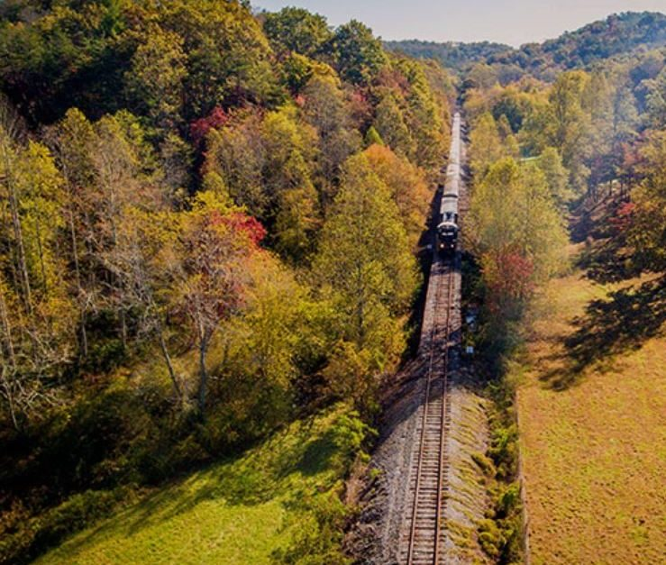 Take in the fall colors on the Blue Ridge Scenic Railway!