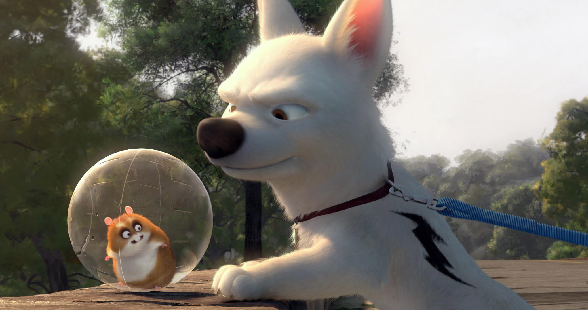 "Bolt the superdog and his pal Rhino in a scene from the Oscar-nominated, animated film ""Bolt."""