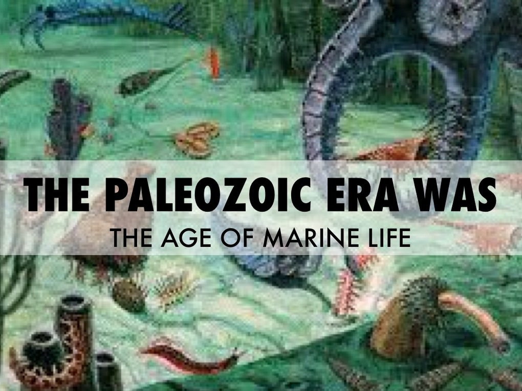 Paleozoic Era 8th Grade Science