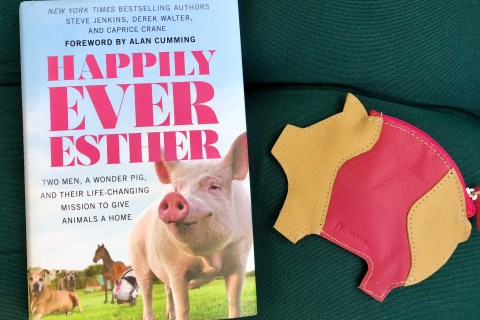 happily-ever-esther-sanctuary-book-review