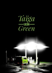 taiga green Volkswagen T2A Band of Campers