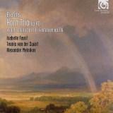 ファウスト ズヴァールト メルニコフ ブラームス ホルン三重奏曲ほか(2007.6録音)