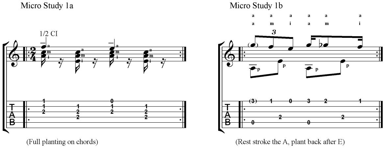 Micro Study 1