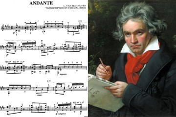 "classical guitar music Beethoven ""andante"""