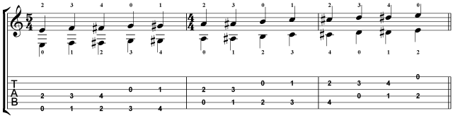 Master Micro study 4 octaviecs
