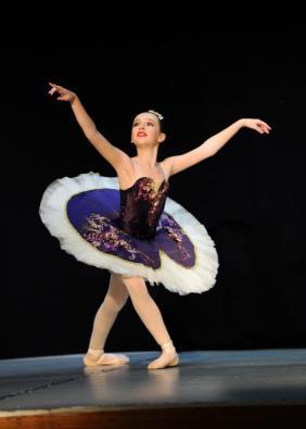 Classical Ballet Tutu - non stretch tutu -eggplant